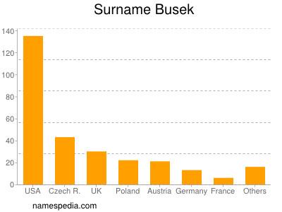 Surname Busek