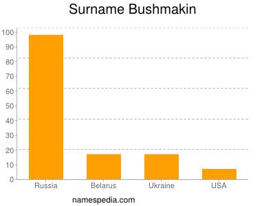 Surname Bushmakin