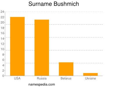 Surname Bushmich