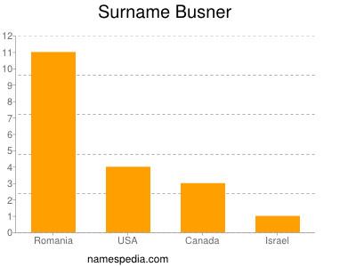 Surname Busner