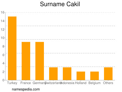 Surname Cakil