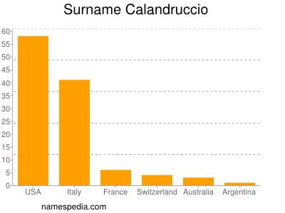 Surname Calandruccio