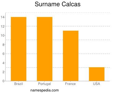 Surname Calcas