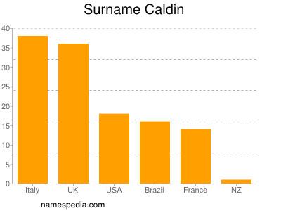 Surname Caldin