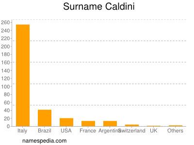 Surname Caldini