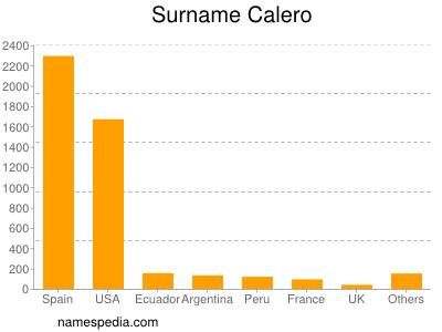Surname Calero