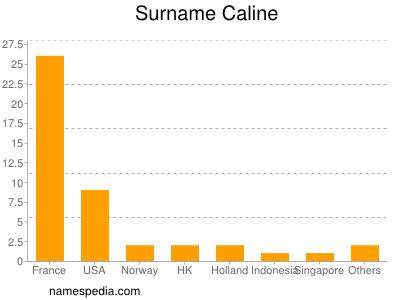 Surname Caline