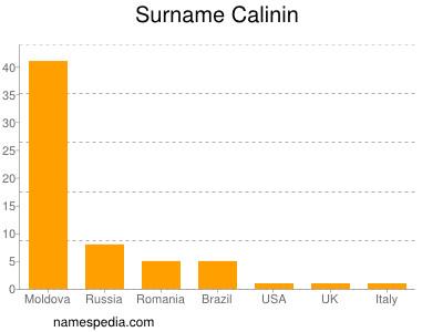Surname Calinin
