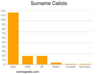 Surname Caliolo