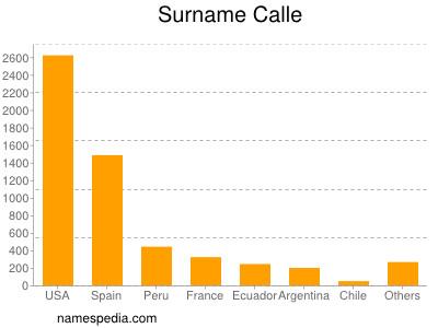 Surname Calle