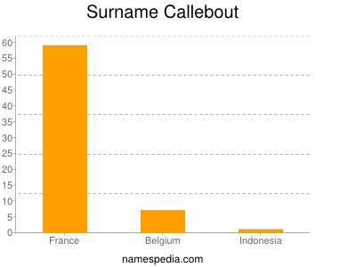 Surname Callebout