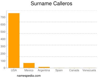 Surname Calleros