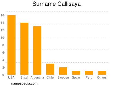 Surname Callisaya