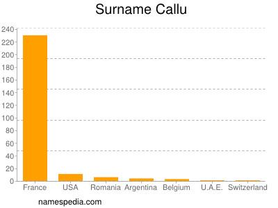 Surname Callu