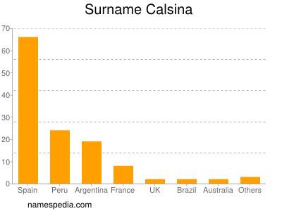 Surname Calsina