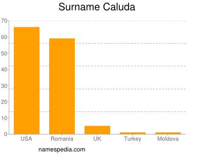 Surname Caluda