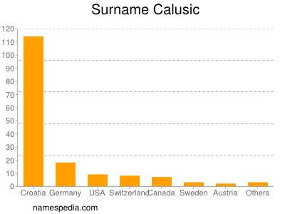 Surname Calusic