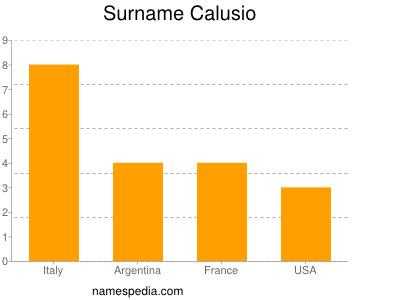 Surname Calusio