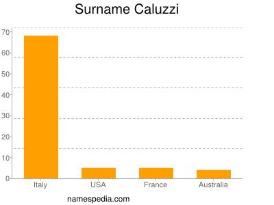 Surname Caluzzi