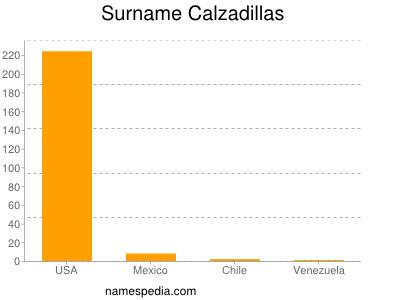 Surname Calzadillas