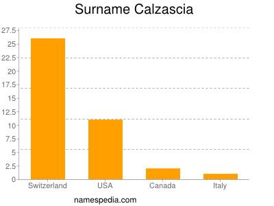 Surname Calzascia