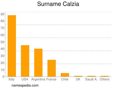 Surname Calzia