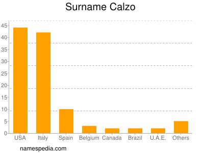 Surname Calzo