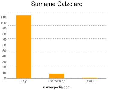 Surname Calzolaro