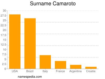 Surname Camaroto