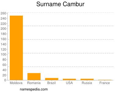 Surname Cambur
