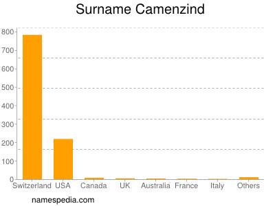 Surname Camenzind