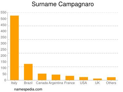 Surname Campagnaro