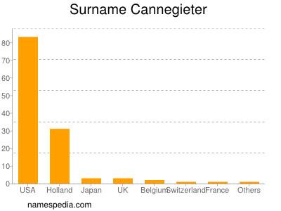 Surname Cannegieter