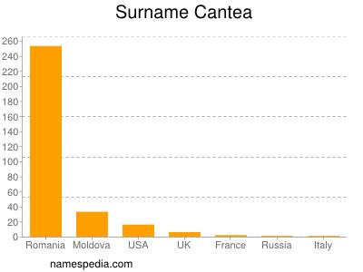 Surname Cantea
