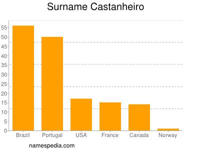 Surname Castanheiro
