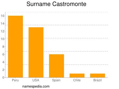 Surname Castromonte