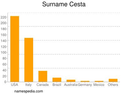 Surname Cesta