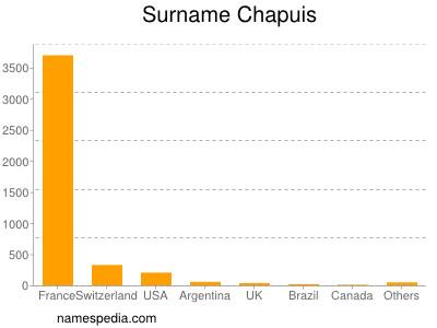 Surname Chapuis