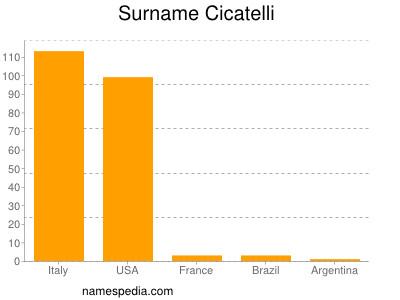 Surname Cicatelli