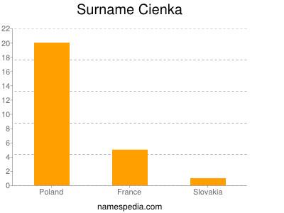 Surname Cienka