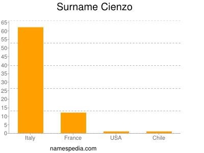 Surname Cienzo