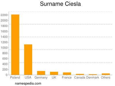 Surname Ciesla