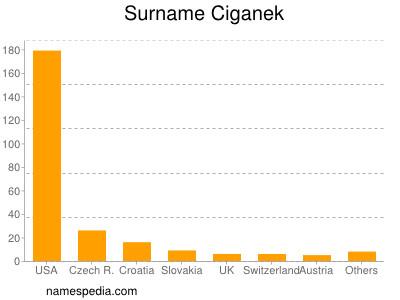 Surname Ciganek