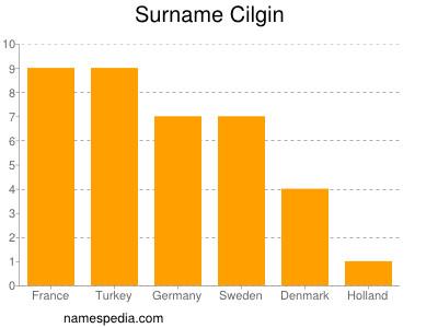 Surname Cilgin