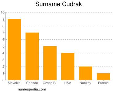 Surname Cudrak