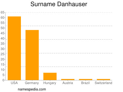Surname Danhauser
