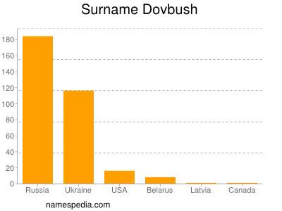 Surname Dovbush