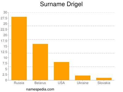 Surname Drigel