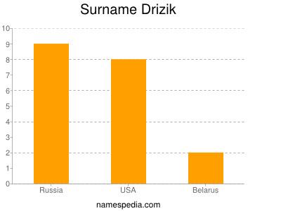 Surname Drizik