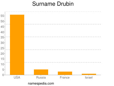 Surname Drubin